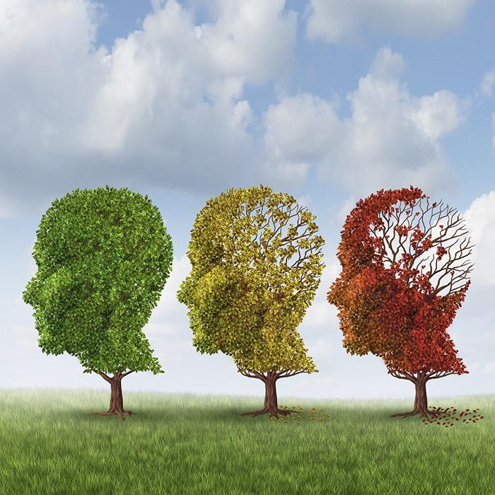 Лечение нарушений памяти